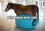 How can I get a strong, flat core? Tips that REALLYwork.